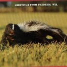 FREDERIC  WI WISCONSIN GREETINGS FROM SKUNK  POSTCARD