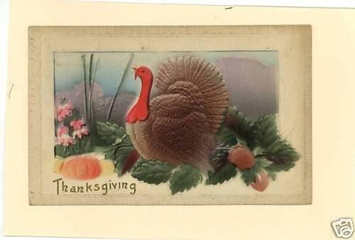 THANKSGIVING EMBOSSED TURKEY PUMPKIN SQUASH 1912 PSTCRD