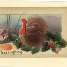 THANKSGIVING EMBOSSED TURKEY PUMPKIN SQUASH 1912 PSTCRD