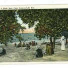 CEDAR POINT OHIO OH A SHADY SPOT BOECKLING  POSTCARD