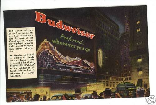 BUDWEISER BEER GRAND CANYON  ST LOUIS MO 1949  POSTCARD