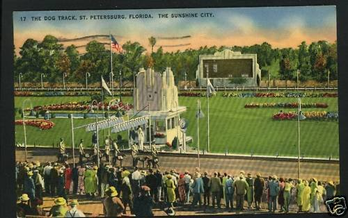 ST PETERSBURG FL FLORIDA DOG RACE TRACK 1942  POSTCARD