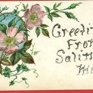 SALINE MICHIGAN GREETINGS FROM GLITTER POSTCARD