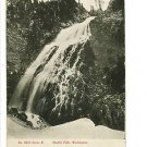 STUSKIN FALLS WA WASHINGTON 1911  POSTCARD EVERETT