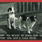 RPPC DOGS COMIC DOG WITH COLD NOSE 1942  RP POSTCARD