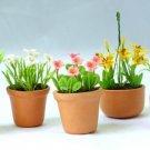 5 pieces English Cottage Garden Collectible NBR106