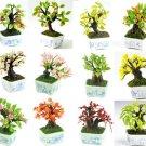 Set of 12 Pieces Lucky Bonsai Miniatures NBR 96