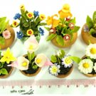 Dollhouse Miniature-8Pieces Clay Flower In Pot NBR 76