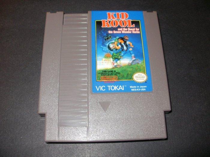 Kid Kool - Nintendo NES
