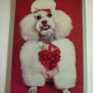 Fluffy White Poodle Playing Swap Card