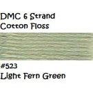 DMC 6 Strnd Cotton Embroidery Floss Light Fern Green 523