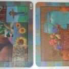 Bountiful Harvest Reversible Placemats Set of 6 Fall NU
