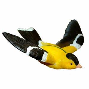 Window Fly Thru - Gold Finch