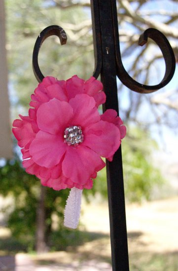 Hibiscus Glitter