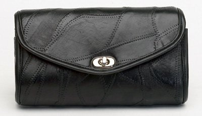 Windshield Bag