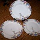 STUNNING ANTIQUE HUTSCHENREUTHER SELB BAVARIA 3 Dinner Plates