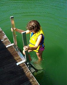 ProStep Docker Dock Ladder Pro-Step