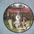 UK Picture Disc 45-BUCKS FIZZ--NOW THOSE DAYS ARE GONE
