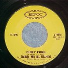45-STANLEY AND THE STEAMERS--PINEY FORK--1969--Epic--NM