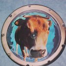 "12"" UK Picture Disc EP--THE BEYOND--RAGING E.P.--1991"