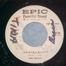 WL Promo 45-JIMMY BREEDLOVE-COULD THIS BE LOVE-Epic-VG+