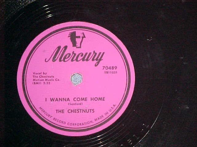 78--THE CHESTNUTS--DON'T GO--1954--Mercury 70489--VG+
