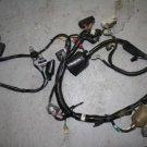 2002 HONDA CBR 600 F4 / F4i MAIN HARNESS