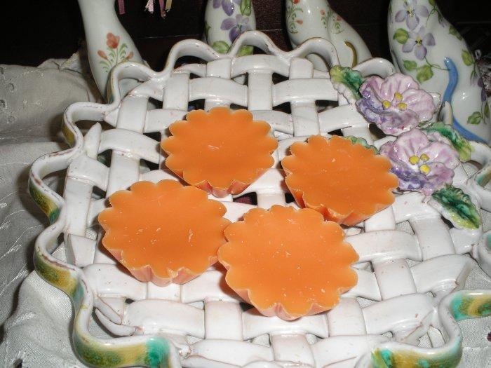 BIRD OF PARADISE Scented Soy Tarts (Vanilla, Strawberry and Coconut) Homemade,  Soy Tarts
