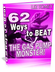 62 Ways To Beat The Gas Pump Monster E-book