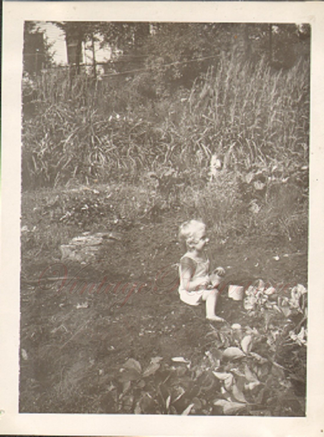 D02804 Young Child Plays in the Dirt Vintage Photo 1940s