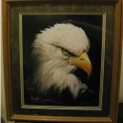 FRAMED...Under Glass (16 x 18)....Magnificent Eagle....James T. Jones