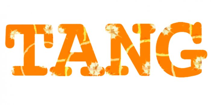 Tang Orange (T-Shirt)