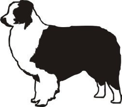 Australian Shepherd Vinyl Window Decal