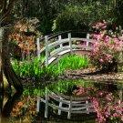 Spring at Magnolia Plantation-12x18