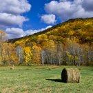 Autumn Fields-12x18