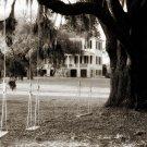Plantation Swings-20x30