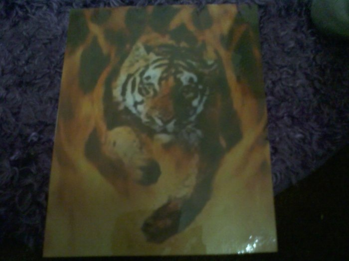 Tiger in flames picture