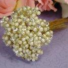 Gold Ivory Elegant Pearl & Flower Bundle 474