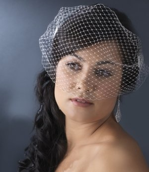 Bird Cage Veil with Side Combs HP 1893