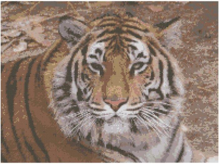 Bengal Tiger Cross Stitch E-Pattern
