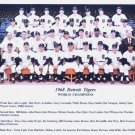 DETROIT TIGERS- 1968 WORLD CHAMPIONS COLOR TEAM PHOTO