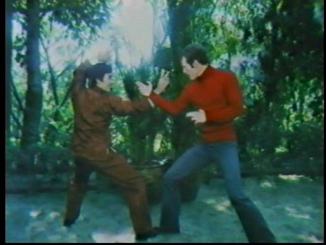 MEN OF THE DRAGON 1974 Kung Fu TV Movie Jared Martin Joseph Wiseman KATIE SAYLOR ROBERT ITO