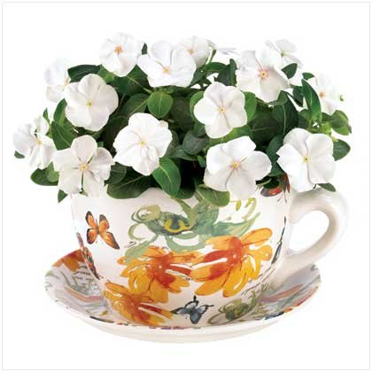 Butterfly Teacup Planter  #12687