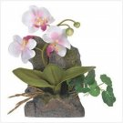 Everlasting Orchid Wall Decor  #39681