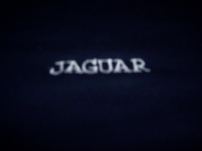 Childs  Jaguar, Ford, Chevy, Dodge Custom Embroidered t shirt