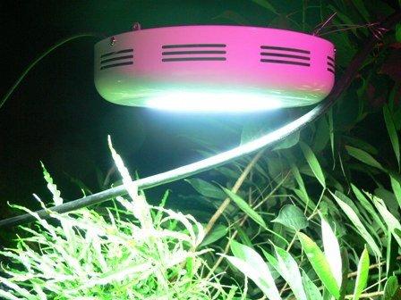 90W UFO Hydroponic Lamp plant Grow Light Red Blue LED