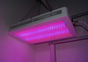 New LED Grow light 200W GrowPanel  High Power LED Grow Ligh 200W