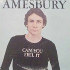 Bill Amesbury - Can YoU Feel It (LP)
