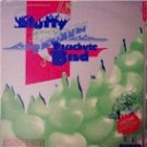 Stuffy and His Frozen Parchite Band (LP)