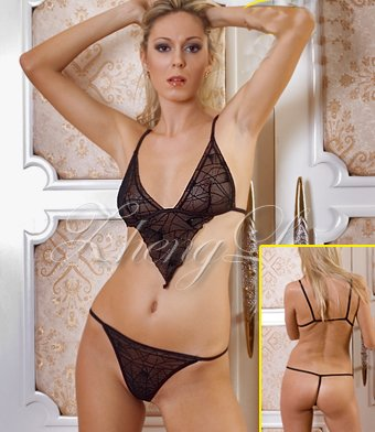Sexy Sheer Web Net Bra and Panty Set Code: ZL3191